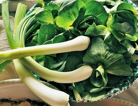 verdure orto biologico verona