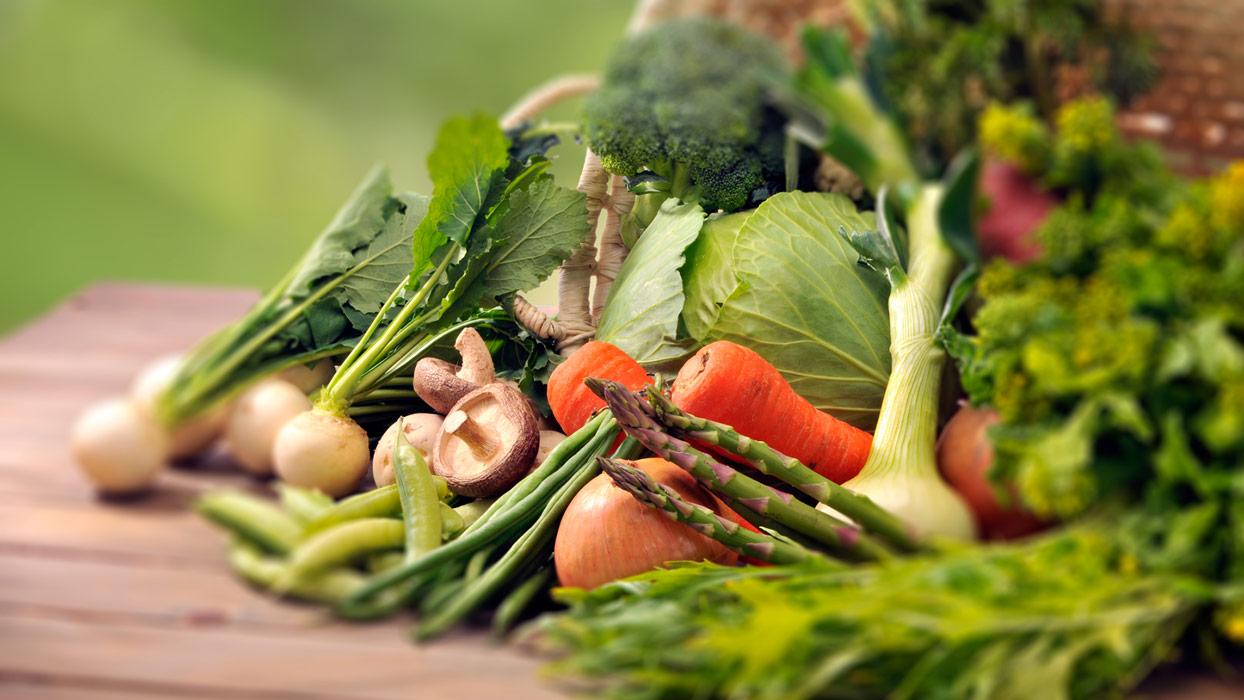 Verdure dell'orto bio dinamico